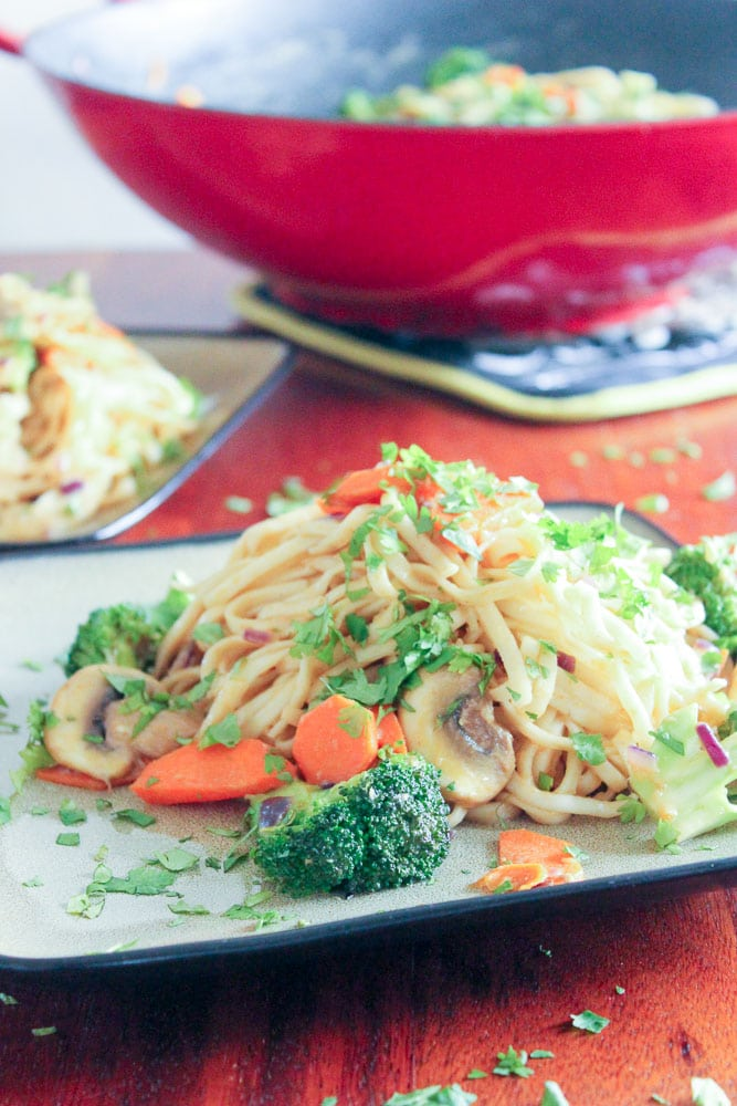 Leftover turkey added to these dan-dan (-ish) noodles is awesome! All of these easy, healthy leftover turkey recipes are the best! Whether you're looking for ways to use up Christmas or Thanksgiving leftovers, or just a rotisserie chicken, these quick recipes are perfect for dinner tonight, lunch tomorrow, or for the freezer!