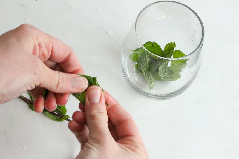 Mint Leaves in Glass on White Marble Board.