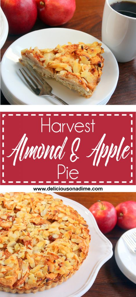 Harvest Apple Pie - This sweet, tart and creamy pie is the perfect fall and winter dessert!