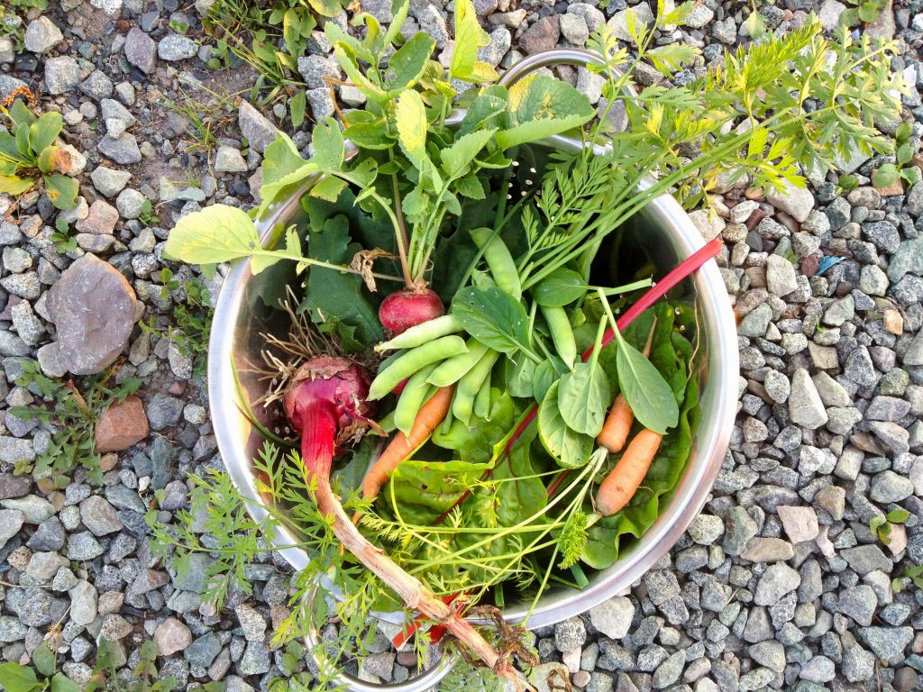Mix of vegetables in metal bowl on rock background.