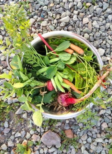 Metal bowl filled filled vegetables and herbs.