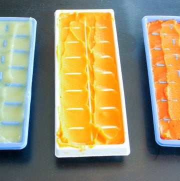 Baby Food Puree in Ice Cube Trays.