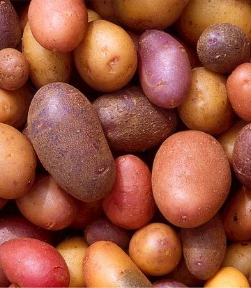 Save Money on Groceries with Potatoes