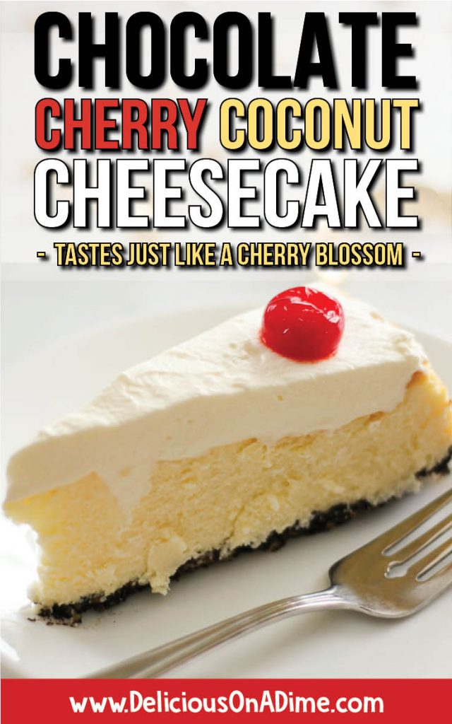 Chocolate Cherry Coconut Cheesecake - tastes like a cherry blossom! - ready to eat!