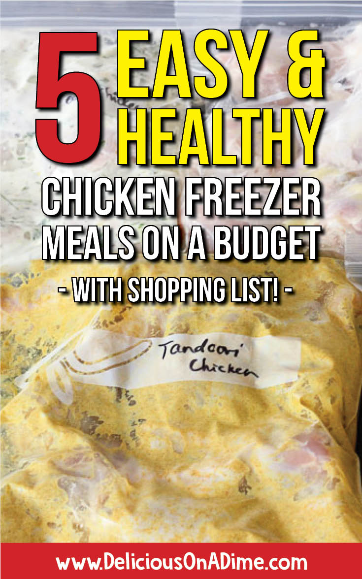 5 Easy & Healthy Chicken Freezer Meals on a Budget (with shopping list!) -- These chicken freezer meals are the perfect solution to family dinners on busy weeknights.  They're cheap to make on a budget, healthy (if you're into clean eating), and easy to make ahead of time.  We've included a simple shopping list to make your life even easier!