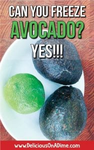 "For all the avocado lovers out there who have ever pondered ""I wonder if you can freeze avocado..."" the answer is yes!!! Learn how to freeze avocado, so it's easy to add this healthy food to your dinners, breakfasts, snacks and smoothies anytime!"