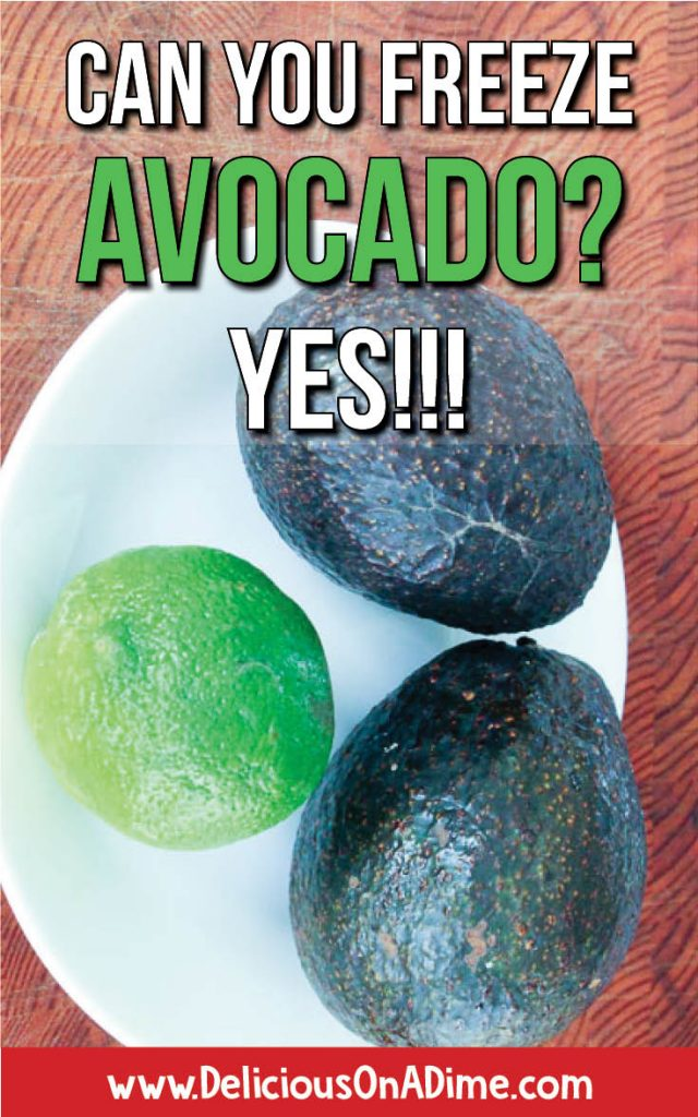 """For all the avocado lovers out there who have ever pondered """"I wonder if you can freeze avocado..."""" the answer is yes!!! Learn how to freeze avocado, so it's easy to add this healthy food to your dinners, breakfasts, snacks and smoothies anytime!"""