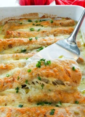 Pan of white chicken enchiladas and spatula.