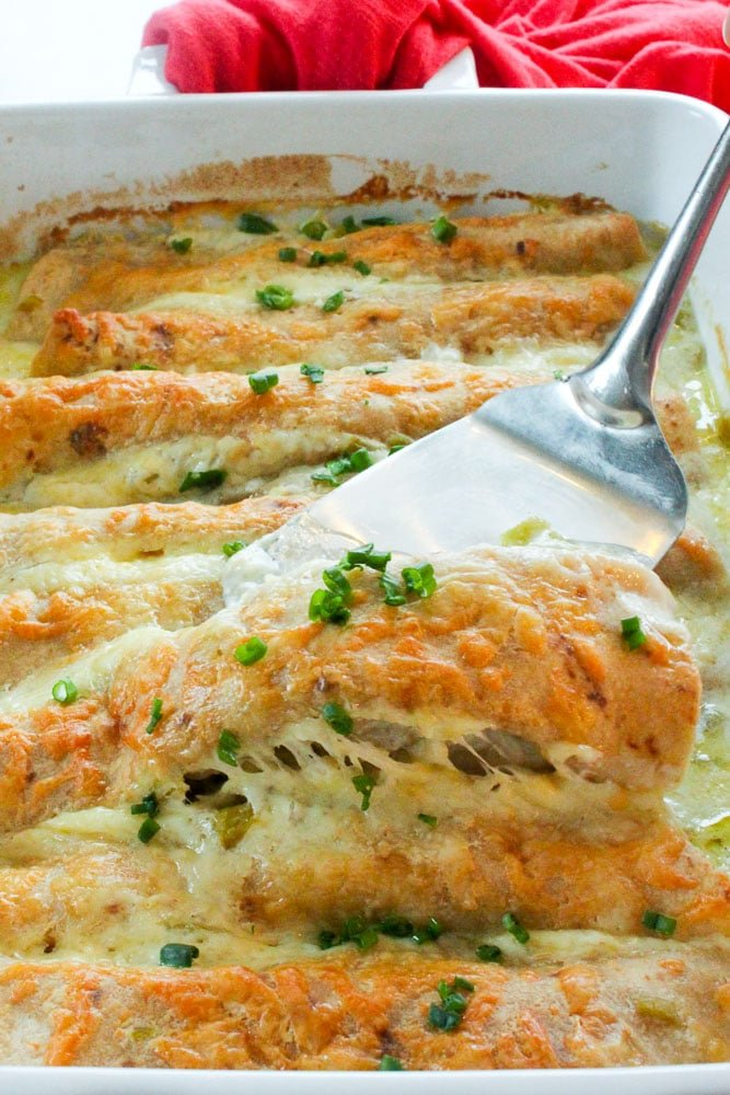 Chicken Enchiladas topped with Cheese and Parsley in White Baking dish.