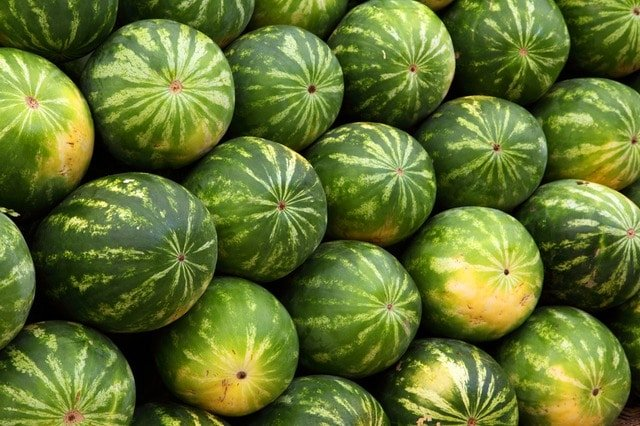 Stacked Whole Watermelons.