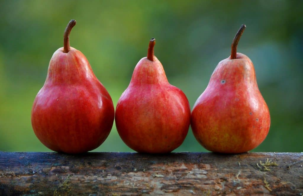Three red Pears on piece of wood.