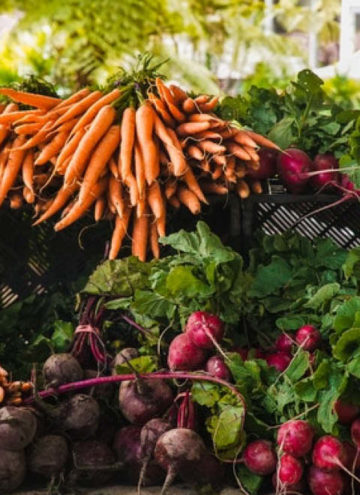 Bunches of carrots, beets and radishes.